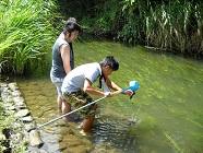 河川底質から環境汚染を調査します。
