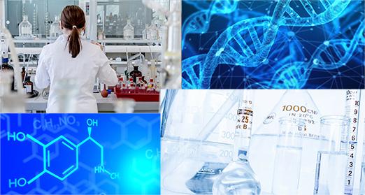 応用化学プログラム