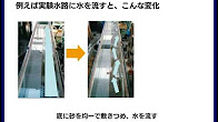 shimizu_org