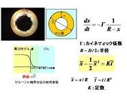 img_research_yamamoto